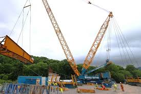 All About Cranes